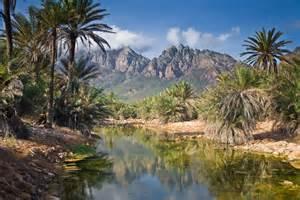 Global Spotlight: <b>Socotra</b>, Yemen | Sarvodaya