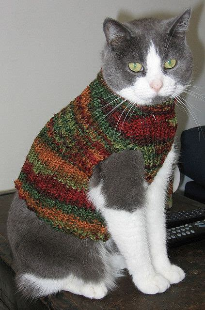 cat sweaters for cats cat vest knitting patterns free