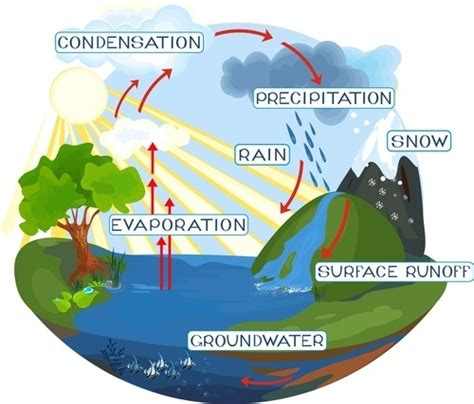 water cycle lesson helpteachingcom