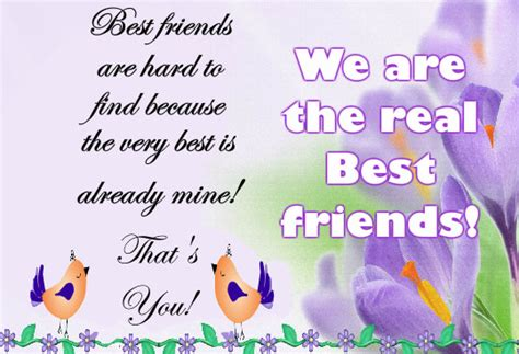 Free Best Friend by Best Friend Is To Find Free Best Friends Ecards