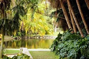 Fairchild tropical botanical gardens miami visions of for Fairchild botanical garden