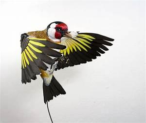 Usa Carta E Legno Per Creare Uccelli Che Sembrano Veri  Ritagliando Ogni Singola Piuma
