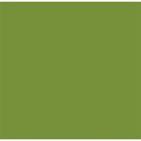 cuisine vert olive salon sixties sur cuisine ouverte