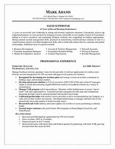 Sales Account Manager Resume Example
