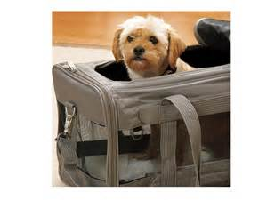Best Pet Carriers for Dogs