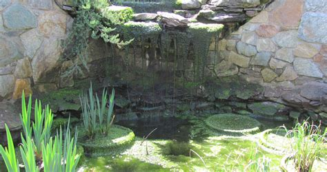 Pond Aquascape by Review Of The Aquascape Ion System Premier Ponds