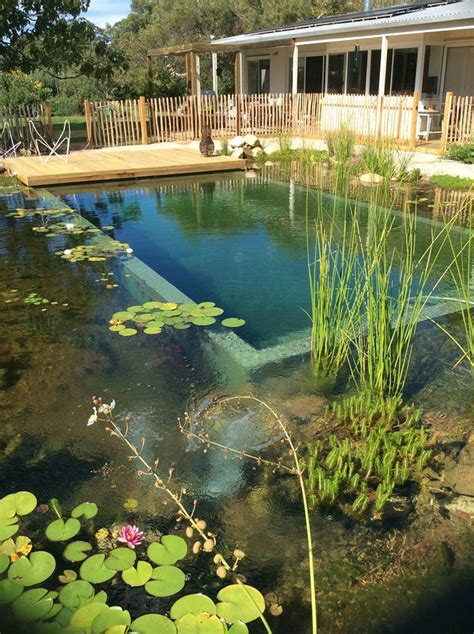 projects natural swimming pools australia