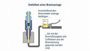 Roller Bremse Entlüften : bremse entl ften motorradbremse entl ften mit dem ~ Kayakingforconservation.com Haus und Dekorationen