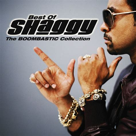 Shaggy  Music Fanart Fanarttv