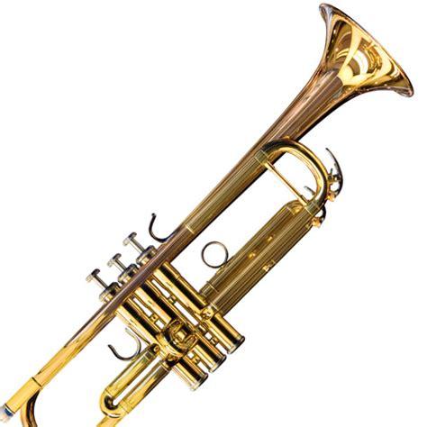 instruments answers level drum trumpet maracas guitar bongo tambourine