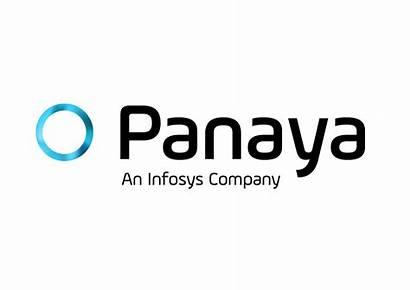 Panaya Company Wikipedia Infosys Totango Software Success