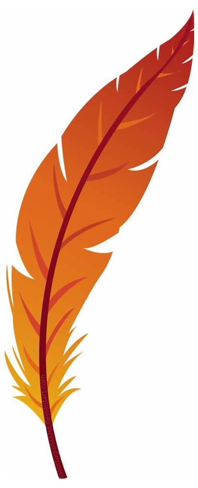 Clipart Feather Feathers Transparent Orange Background Clip