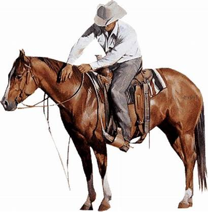 Cheval Western Cowboy Homme Tubes Animaux Gifs