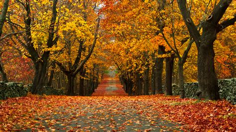 28 Small Towns Across America With The Most Beautiful Fall