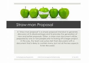 strawman proposal template one piece