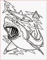 Shark Coloring Sharks Pages Teeth Drawing Printable Outline Bulls Anatomy Sheet Chicago Lavagirl Sharkboy Clark Kidsplaycolor Getcolorings Getdrawings Sheets Print sketch template