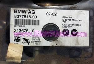 Bmwgm5 E46 Wagon Fzv Antenna Amplifier