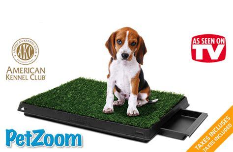 tapis pipi pour chien tuango 59 pour un ensemble de tapis de soulagement pour chiens 171 pet park deluxe 187 par petzoom