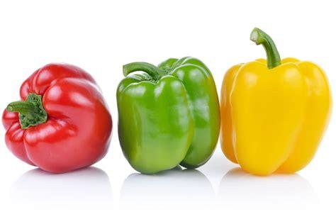 cuisiner poivron tout sur le poivron le choisir le cuisiner le conserver