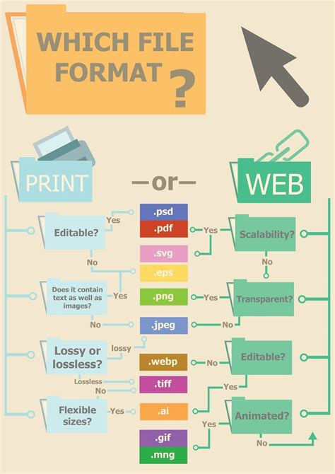 8 Best Images About Infographics For File Formats On