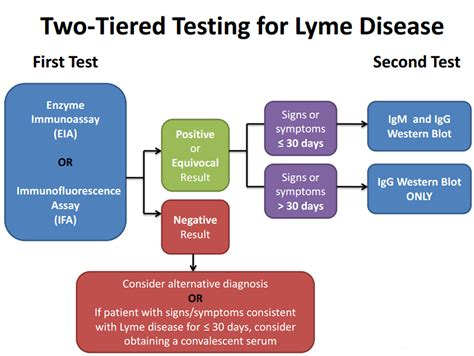 LYMEPOLICYWONK: Lyme disease testing—the CDC, LabCorp and ...