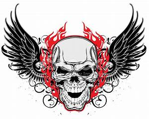 Insane Skull and Wings stock photos - FreeImages.com