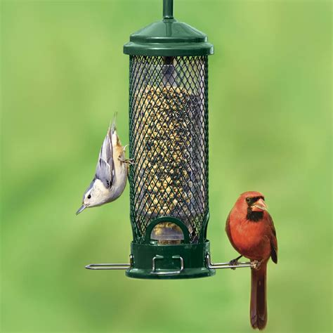 squirrel proof bird feeders duncraft bird feedersbird