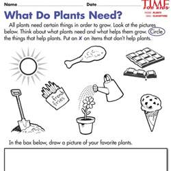 Plants Worksheets What Plants Need To Grow Worksheet Delibertad