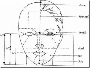 Facial proportions | Art How To - Human Body | Pinterest ...