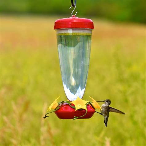 best hummingbird feeder no spill hummingbird feeder shelmerdine garden center