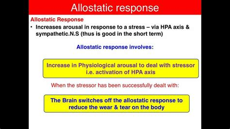 Allostasis  Vce U4 Psychology  Youtube. Halloween Jeopardy Game Us Bank Business Card. Stanford Business School Online. Business Credit Cards Using Ein Only. What Is An Engineer Salary The Doctors Group. University Of South Florida Transfer. Cleaning Services Cincinnati. Adn Programs In Georgia How To Install Splunk. Tia 942 Data Center Standard