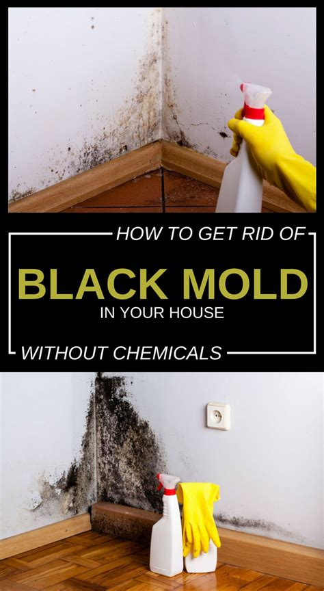 mold rid chemicals without 101cleaningtips walls clean diy advertisements solutions cleaning