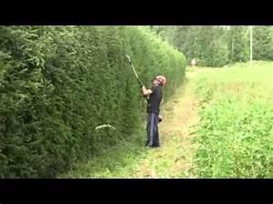 Taille Haie Stihl Perche : taille haie perche stihl km100r youtube ~ Dailycaller-alerts.com Idées de Décoration