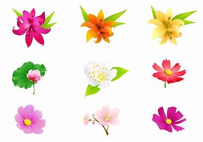 Tropical Flower Vector Psd Pack Plants Watercolor