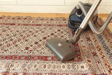 vacuum  carpet  tile bindu bhatia astrology
