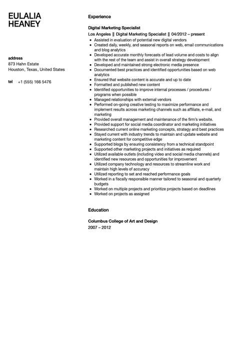 Boston Resume Writer Reviews by Cisco Resume Cover Letter Sle Resume For Auditor