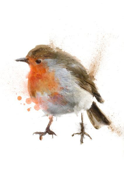what color is a robin robin colour pencil and in color robin colour