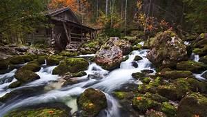 Wallpaper, Landscape, Forest, Waterfall, Rock, Nature