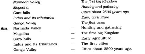 ncert solutions  class  social science history