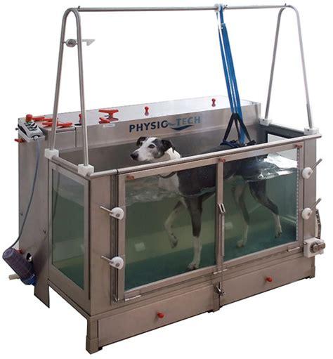 unterwasserlaufband fuer hunde aller groessen und rassen