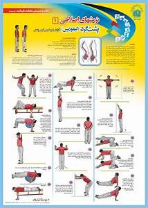 اسیب شناسی ورزشی و حرکات اصلاحی - مطالب ناهنجاریهای اسکلتی