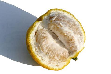 beurre de yuzu beurre de citron contre