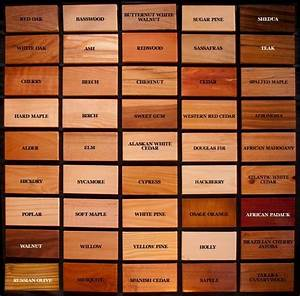 25+ best ideas about Wood types on Pinterest Types of