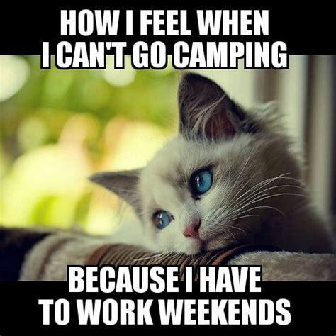 I Work Weekends Meme - meme depressed cat working weekends woodland gear