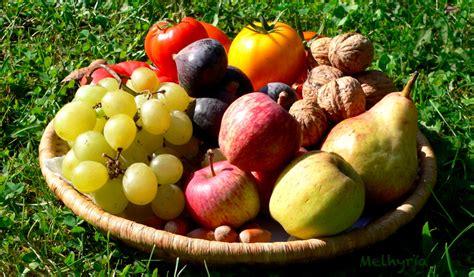 panier de fruits by melhyria on deviantart