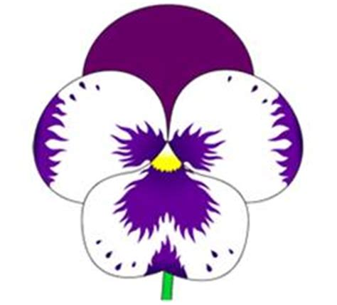 how to draw a purple flower violets flowers drawing www pixshark com images galleries with a bite