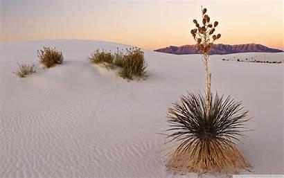 Desert Sand Wallpapers Scenery Desktop Sands 4k