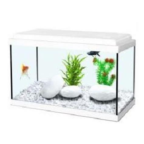 aquarium poisson achat vente aquarium poisson pas cher cdiscount