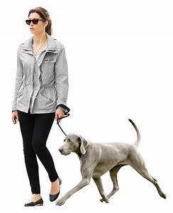 Walking Dog Png | www.pixshark.com - Images Galleries With ...