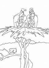 Albatross Coloring Moms Coloringbay sketch template